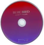 DVD B